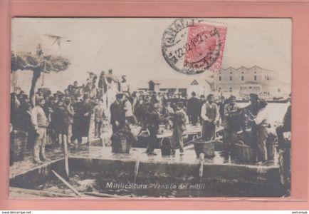 0006 001 Old-postcard-italia-italy-taranto-type-vendita-dei-mitili-mitilicoltura